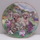 Collector Plate Little Gardeners from Cottae Puppies Series Hamilton Collection