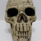 Halloween Decoration Human Skull Replica Haunted House