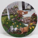 Collector Plate Kitty Corner by Higgins Bond