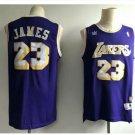 Mens Los Angeles Lakers 23# LeBron James Purple Basketball Jersey 3D