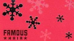 Famous Hair Salon Collectible Gift Card - Silver Foil Snowflake SV0701488 - USED