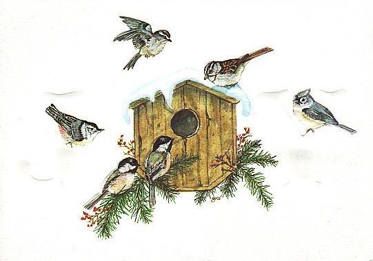 Christmas Card Promotional Print - JOY Backyard Birds H202