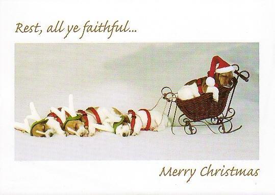 Christmas Card Promotional Print - Santa's Yelpers H201