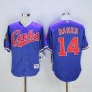 Men's  Chicago Cubs 14 Ernie Banks Blue 1994 Turn Back The Clock Cool Base Jersey