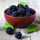 30pcs Blackberry Seeds, Dewberry, Fruit Plant Seeds