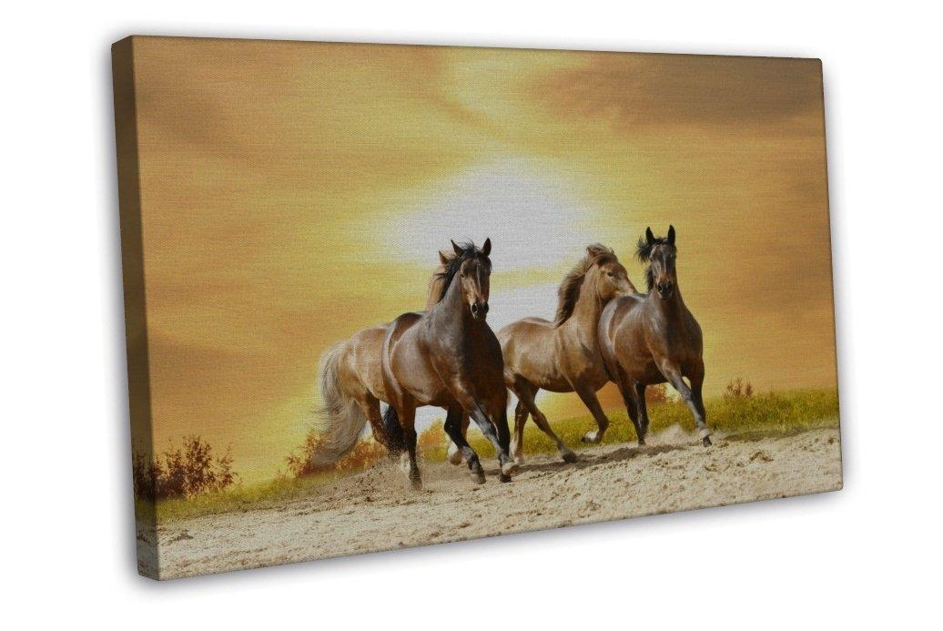 wild horses wall art amp canvas prints wild horses - 1036×693