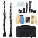 IRIN 17 key Bb Adjustable Gum Wood Clarinet with Case/Bass StripReed/Screwdriver/Gloves