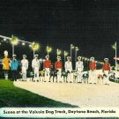 Daytona Beach Volusia Dog Track