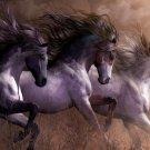 Horses Running Wild Natural Animal Art Silk Fabric Wall Poster Print Picture 24x36 Inches