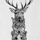 Stag Wolf Bear Pencil Sketch Wild Animal Poster Fabric Silk Posters And Prints Art 24x36 Inches