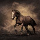 Strong Horse Running Wild Animal Fabric Silk Posters And Prints Wall Art 24x36 Inches
