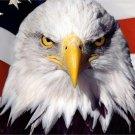 USA Flag Eagle Hawks Animal Fabric Silk Posters And Prints Home Decor Wall Art 24x36 Inch