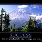 SUCCESS- George Eliot Motivational Fabric Silk Posters And Prints Home Art 24x36 Inch