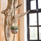Plant Hanger Macrame Knots Garden Indoor Outdoor