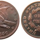 Souvenir USA New Flying Eagle 1856 Copper Small Cent - Free Shipping