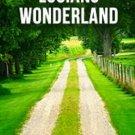 Audiobook LUCIANS WONDERLAND by Lucian no CD MP3