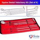 SD0363 Smile England Equine Dental Mirror Scaler Probe Explorer Veterinary Kit / Set SS