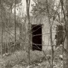The Old Shelter
