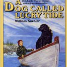 A Dog Called Lucky Tide by William Koehler