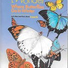 I Wonder Where Butterflies Go In Winter by Molly Marr