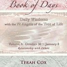 BIRTH ANGELS BOOK of DAYS by Terah Cox