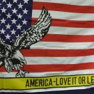 "Flag- Eagle with Banner That Says ""America Love It Or Leave It"""