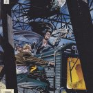 Batman Chronicles #1
