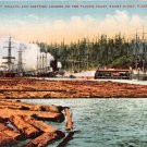 PUGET SOUND WA~MILLING SHIPPING LUMBER ON THE PACIFIC COAST~E MITCHELL POSTCARD