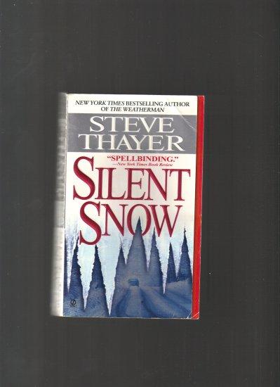 SILENT SNOW BY STEVE THAYER