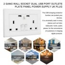 2 Gang Wall Socket Dual USB Port Outlets Plate Panel Power Supply UK Plug