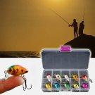 10pcs Fishing Lure Bait 3cm/Mini Minor Fish Baits Boxed 10 Colors