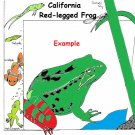 Endangered Species Learning Coloring Book --eBook-- (pdf) Animal Coloring Book [Download]