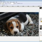 Pinta Software for Windows [Download]