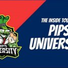 Pips University 18.5+ hours 3.44GB on USB FLASH DRIVE