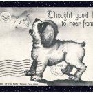 """Handmade Note Cards Set of 5,  Dog Howling At the Moon """"Thought You'd Like To Hear From Me!"""""""