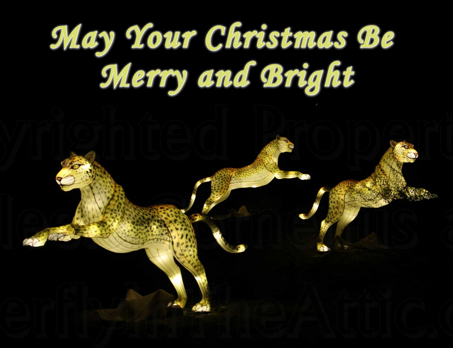 Handmade Christmas Cards Set of 5, Cheetah Family Night May Your Christmas be Merry and Bright