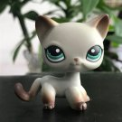 Cat White Gradation Brown on Ear Feet with Strip Green Eye Little Pet Shop 1:60 LPS Cute Collection