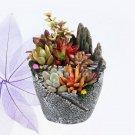 Tiny Micro Landscape Flower Pot Artificial Succulent Plants Pot With Sweet House