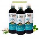 3 Shampoo de Bergamota, Moringa y Romero  -USA