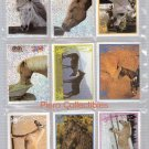 Geliebte Pferde Complete Set Stickers Panini Amour Cheval Horses