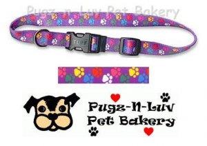 """Pet Attire Fashion Dog Collar Colored Paws 1"""" Nylon"""