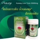Ausway Liver Tonic 35,000mg Milk Thistle Silymarin Best Detox (100 Capsules)