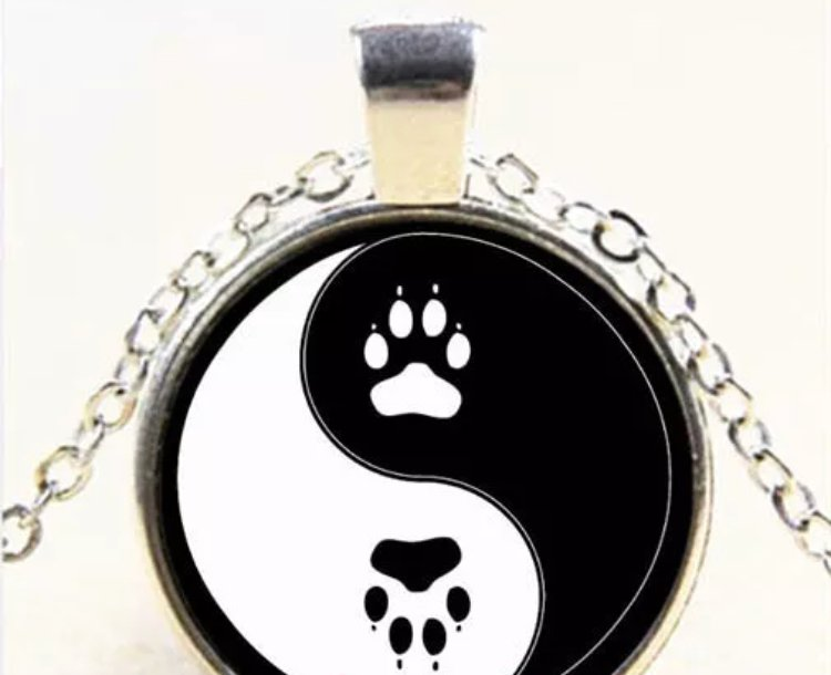 Paw Print Yin Yang Pendant Necklace Tibetan Cabochon Glass Dome Fashion Accessory Silver Jewelry