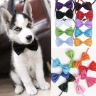 Adjustable Bow Tie Pet Puppy Dog Kitten Cat Cute Collar Holiday Easter Birthday Accessory