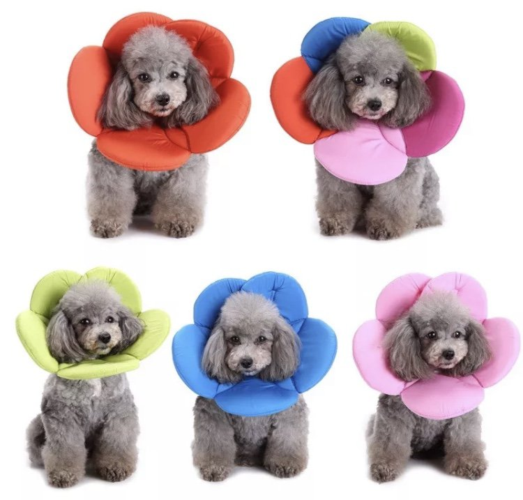 Flower Neck Cone Safety Protector S-L Adjustable Helpful Lick Bite Itch Wound Dog Cat Pet Supplies