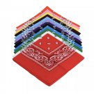 Double Side Paisley Print Bandana Headband Neckerchief Scarf Mask Dust Dirt Protection Accessory