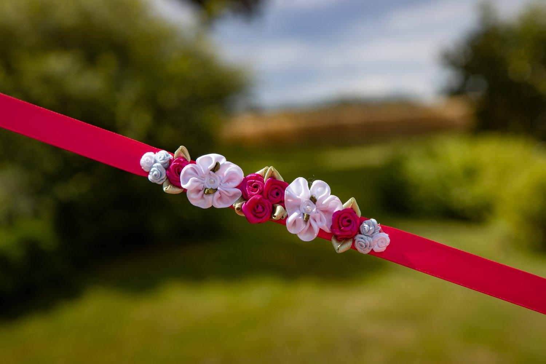 Bright pink bunwra[