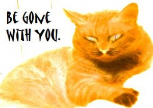 email-art BE GONE WITH YOU funny humor cat cats digital art