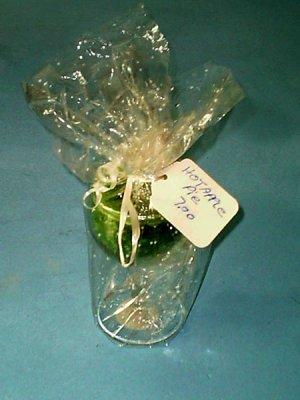 Wine Glass Gift Basket