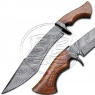15″ Custom Hand Forged Damascus Steel walnut Wood Hunting Knife (BB-H981)